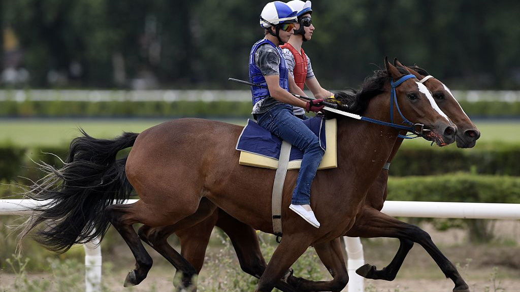 G1 Racing, Sales, Make Buenos Aires a Must-See Destination